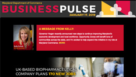 Business Pulse sample image